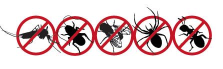 Pengendalian Hama Serangga